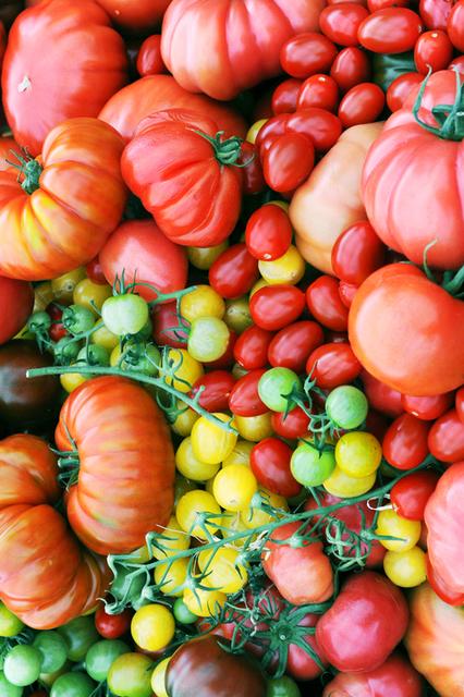トマトはサラダだけじゃない!夏野菜のトマトを何倍も楽しむためのあったかレシピ