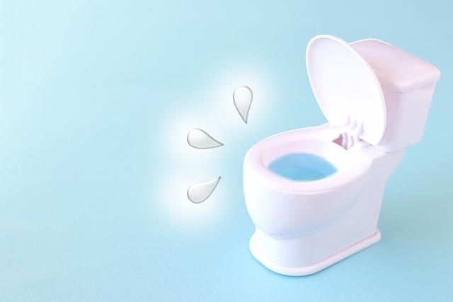 食品ラップの意外な活用術!ラップでトイレの詰まりを解消する方法
