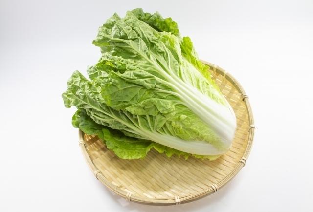 意外と知らない⁉ 白菜の切り方を基本から裏ワザまでチェック!