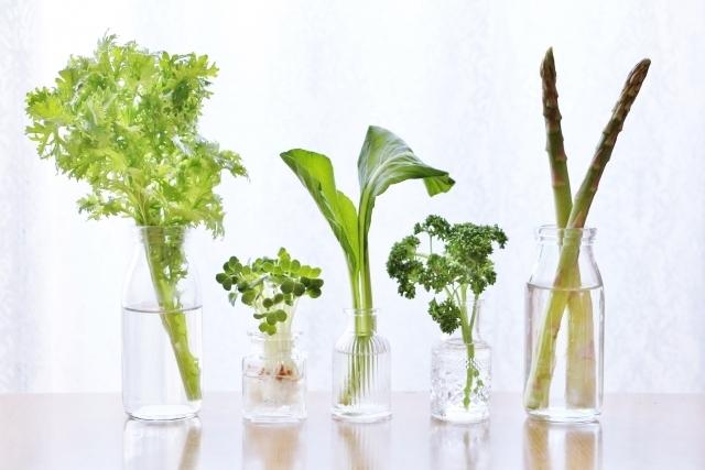 生野菜の保存にぴったりなの食品ラップはポリラップ!