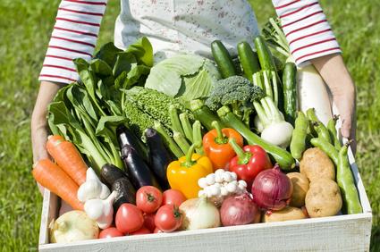 野菜 通販 有機