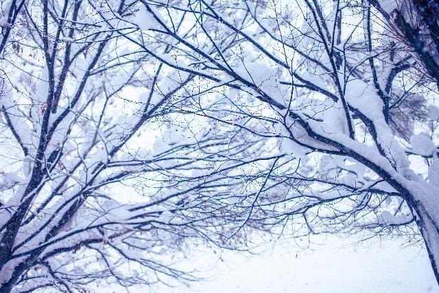 真冬に災害が起こったら…。どうする?非常時の寒さ対策