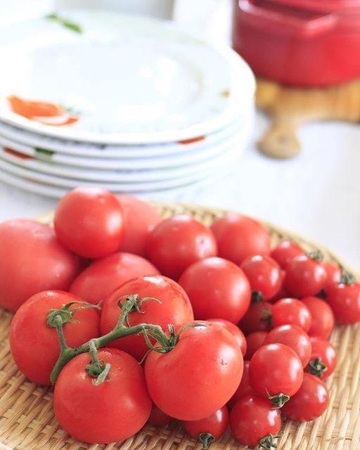 夏こそトマト♡おかずにもなるトマトレシピで食べつくそう!