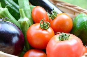 旬の野菜で夏を乗り切る!夏野菜の離乳食レシピ【トマト、きゅうり、枝豆】
