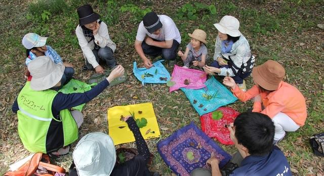 子どもの自然体験って大切!アウトドアを楽しむならネイチャーゲームはいかが?