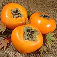 ビタミンCたっぷり♡和風も洋風もデザートもおいしい柿のレシピ