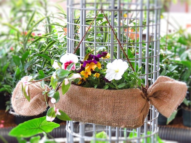『ペットボトルハンギング』を作りましょう♪ペットボトルの再利用で庭先やベランダをお花でいっぱいに!