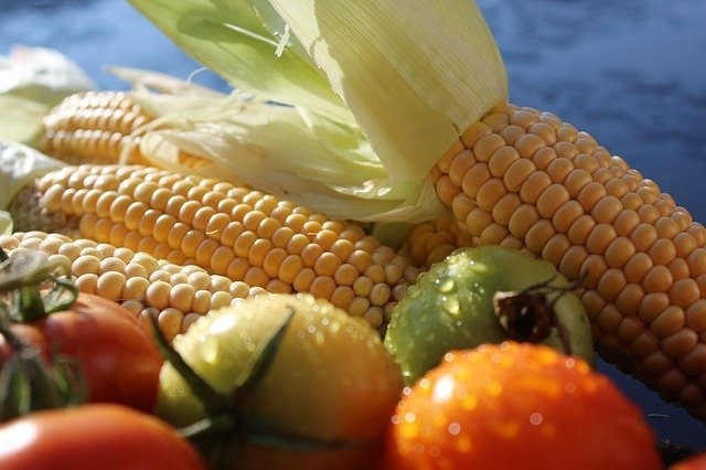 栄養たっぷり♪旬の夏野菜で作る離乳食レシピいろいろ