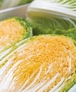 新しいタイプの白菜「オレンジ白菜」って知ってる?栄養価が高く、甘い!